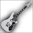 Oddelenie elektrické gitary 12-strunové