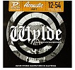 Dunlop Zakk Wylde Icon Phosphor Bronze Acoustic Strings Light, DHT1076